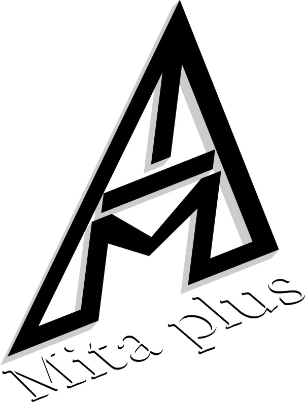 mita plus logo wb